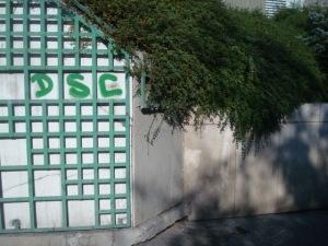 DSC08766
